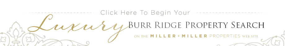 Burr Ridge home search