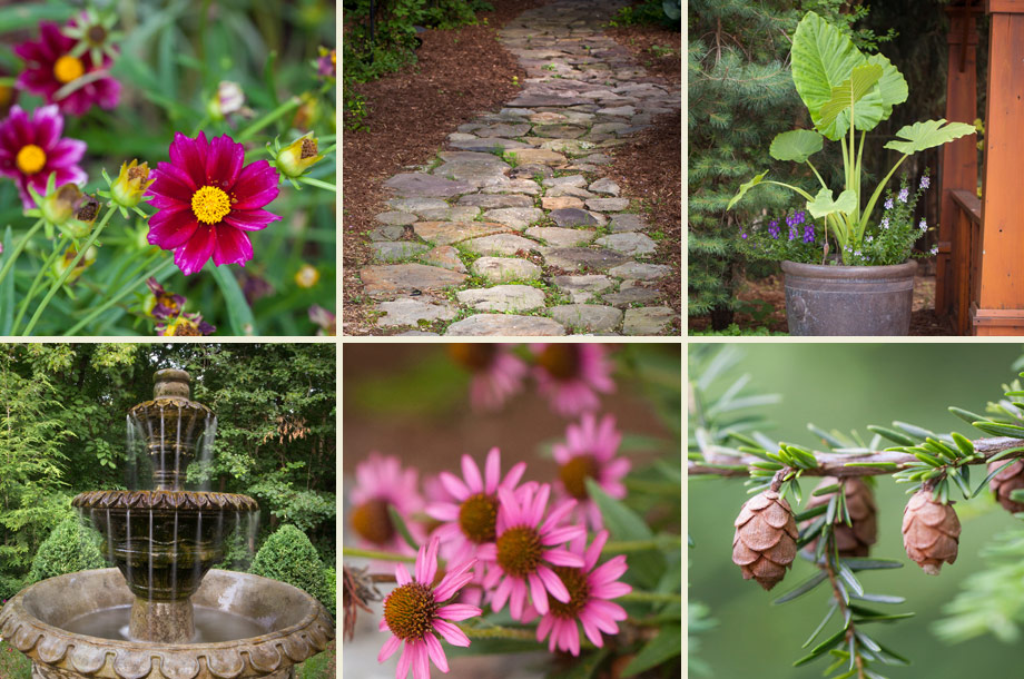 nature stone paths pine trees cones pink perennial flowers fountain